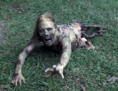 The-walking-dead-primeras-temporadas-MG